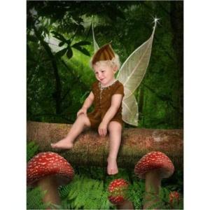 Elfje-B-Sprookjesfoto: Uw kind als elfje op de foto!