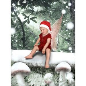 PW-elf-snow-forest-Sprookjesfoto: Uw kind als elfje op de foto!