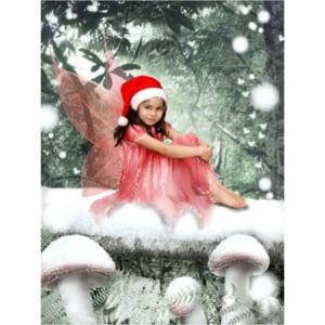 PW-fairies-Q-snow-forest-Sprookjesfoto: Uw kind als elfje op de foto!